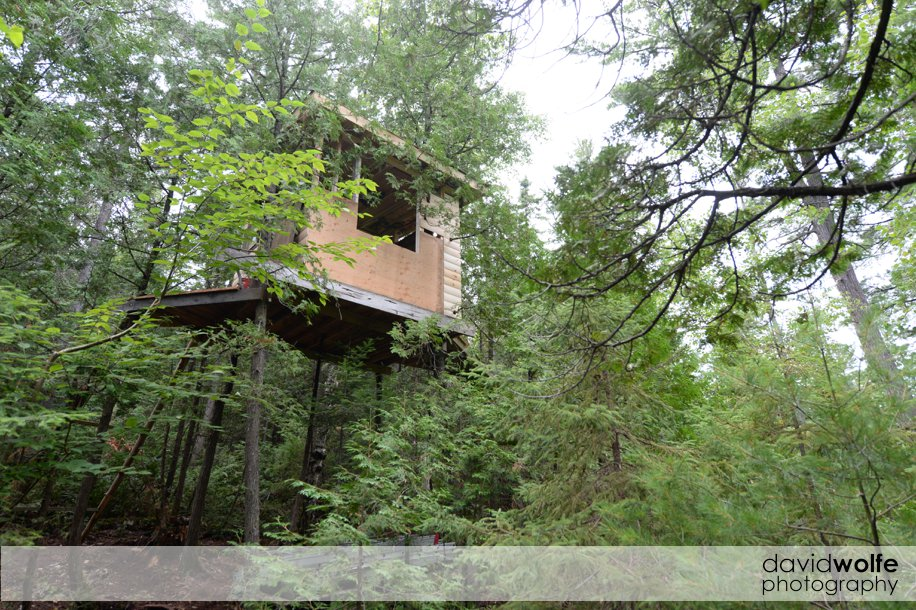treehouse0008