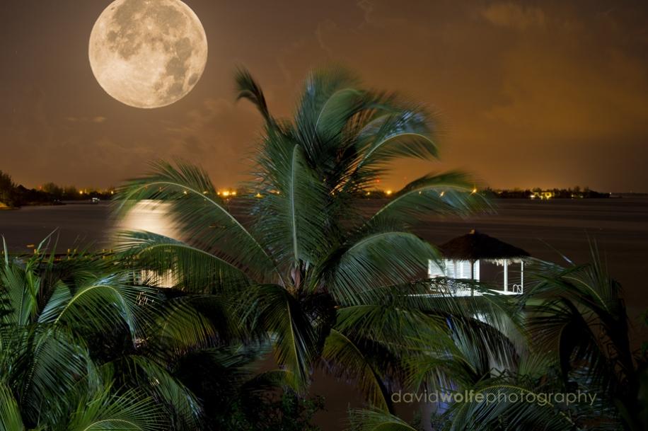 caribbean-moon-riseb