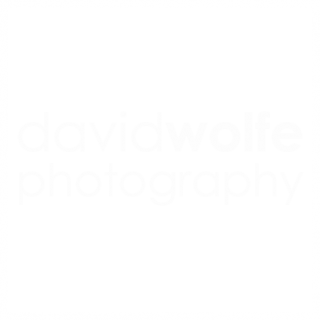 David Wolfe Caribbean Photographer Blog - Cayman Islands